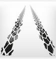 automotive tire tracks vector image vector image