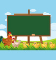 blackboard template design with chickens vector image vector image