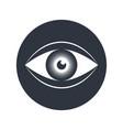 eye sign vector image