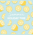 fruit background design with summer holiday time vector image vector image