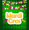 mardi gras brochure templatecelebration greeting vector image vector image