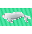 Sea lion vector image