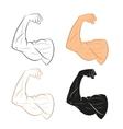 set arm vector image