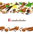 Spices seamless borders vector image vector image