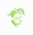 vintage lemon label vector image vector image