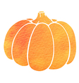 Watercolor silhouette of pumpkin vector image vector image