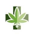 medical marijuana flat icon vector image