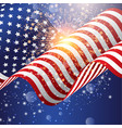 american flag background with firework vector image