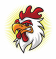 angry rooster mascot logo premium cartoon vector image vector image