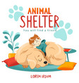 Animal shelter design poster with child dog and
