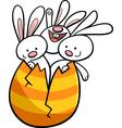 easter bunnies in egg cartoon vector image vector image