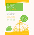 fresh local vegetables label template abstract vector image