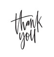 thank you ink pen lettering thankfulness vector image vector image