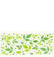 white square background with stripe of leaves vector image vector image