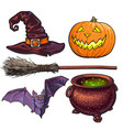 witch halloween accessories - hat caldron jack vector image vector image