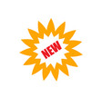 new logo novelty icon yellow star flower vector image