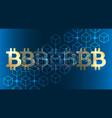 blockchain bitcoin background vector image