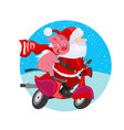 cheerful santa claus and pig on a red scooter vector image vector image