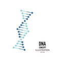 dna simbol in flat style on a white background vector image vector image