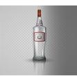 Glass vodka bottle with screw cap vector image vector image