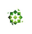 green cross herbs logotype octagonal star vector image vector image