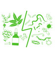herbal medicine vs bacteria and parasites vector image vector image