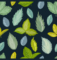 seamless pattern of berry leaves vector image vector image