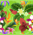 seamless pattern with cctropical plants vector image vector image