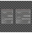 Template Blank Transparent Package Set vector image vector image