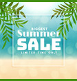 biggest summer sale background design vector image