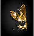 golden hummingbird vector image