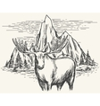 hand drawn landscape with moose vector image vector image