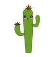 isolated desert cactus vector image vector image