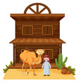 arab man and camel at western style building vector image vector image