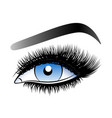 blue woman eye with long false lashes vector image
