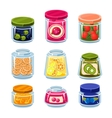 Canned Fruit and Vegetables in Cans vector image