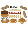 collection of hand drawn peanut bread with peanut vector image vector image