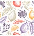 ink hand drawn citrus fruits backdrop lemons vector image vector image