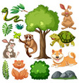 set cute wild animal and nature vector image vector image