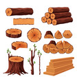 set of firewood materials for lumber industry vector image vector image