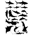 underwater animals vector image vector image