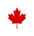 canada maple leaf icon simple vector image