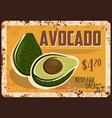 avocado rusty metal plate fresh fruit vector image