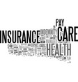 basic types of health insurance text word cloud vector image vector image