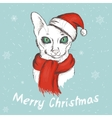 christmas green eyed cat vector image vector image