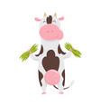 cute spotted cow eating grass funny farm animal vector image vector image