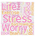 How Stress Effects Your Body And Brain And What To vector image vector image