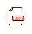 pkg file format extension color line icon vector image vector image