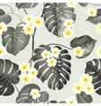 Plumeria flowers and jungle palm vector image