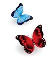 Bright blue and red butterfly vector image vector image